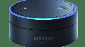 Listen to LeoFM on your Amazon Alexa smart speaker!